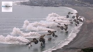 Download Massive Korea & U.S. Marines Amphibious Beach Landing Video