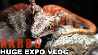 Download HUGE REPTILE EXPO VLOG! | NARBC TINLEY PARK Video