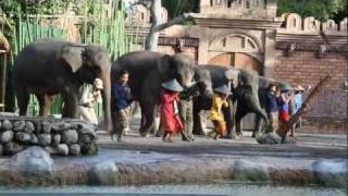 Download Bali Safari and Marine Park / (Bali, Indonesia) Video