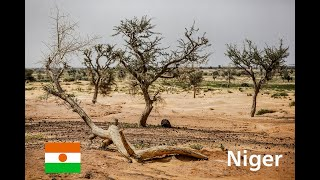 Download Expanding Africa's Great Green Wall Video