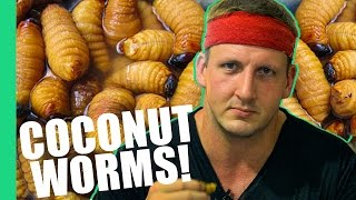 Download HOW TO EAT COCONUT WORMS! (Inspirational) Video