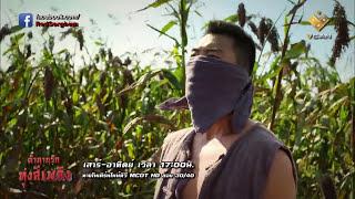 Download ตำนานรักทุ่งสีเพลิง Red Sorghum | ฉากเลิฟซีนถูกตัด ไม่ได้ออกอากาศ | Deleted LOVE SCENE [FULL HD] Video