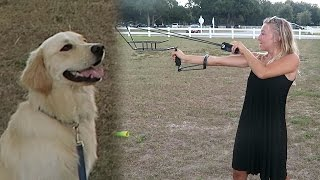 Download THE ULTIMATE FETCH TOYS! Tennis Ball Slingshot and Bazooka (SCS #63) Video