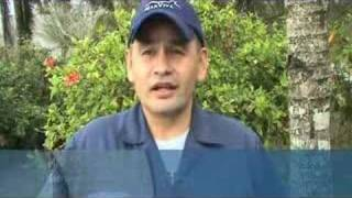 Download Eastern Tropical Pacific PART 1-Conservation International Video