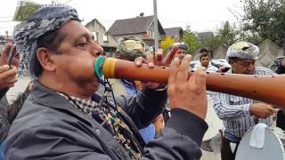 Download Lodra 2015 Gzimi Shema Selamia Haxhia Ne suharek Video