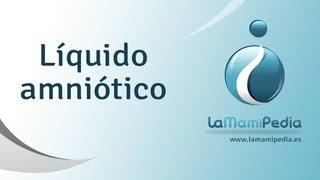 Download Líquido amniótico Video