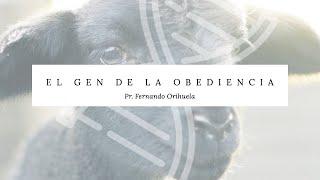 Download El gen de la obediencia//Ap Fernando Orihuela Video