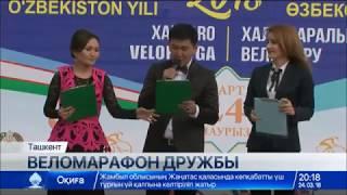 Download Веломарафон по маршруту Ташкент – Шымкент стартовал в Узбекистане Video