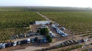 Download LDS Vineyard / Grape Harvest 2016 (Available in 4K & 1080p Resolutions) Video