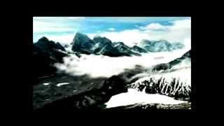 Download Посмотри какая Красивая природа флора и фауна Прекрасная песня Video
