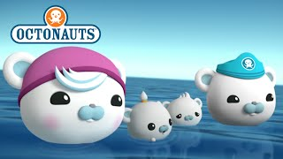 Download Octonauts - Family Affair Video