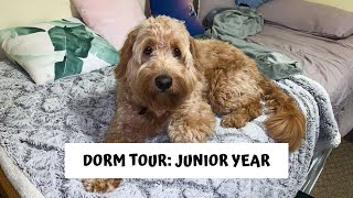 Download DORM TOUR: JUNIOR YEAR Video