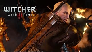 Download Official Launch Trailer - The Witcher 3: Wild Hunt Video