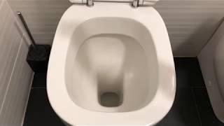 Download Come sbiancare, igienizzare ed eliminare il calcare dall'interno del WC Video