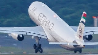 Download CAPTAIN! You forgot your LANDING GEAR - AIRBUS A330 Departure (4K) Video