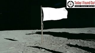 Download What Happened to the Flags on the Moon? Video