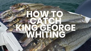 Download How To Catch King George Whiting - Hooked Up Video Video