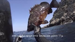 Download To κυνήγι του Ροφού στο Αιγαίο.. Video