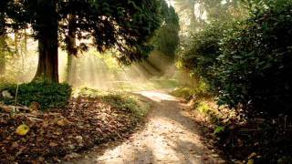 Download Chinese Folk Music - Tai Chi Ch'uan Way And Meditation Video
