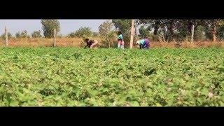 Download Kheyti - Small Farmer | Smart Farmer Video
