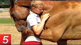 Download Unbelievable Animals That SAVED People's Lives Video