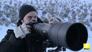 Download ″Capturing Wildlife″ by Florian and Salomon Schulz Video