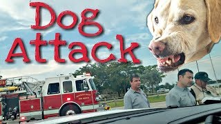 Download DOG ATTACK | 124. Road Warrior Life Video