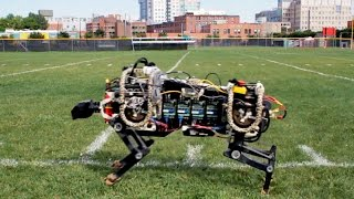 Download MIT Robotic Cheetah Video
