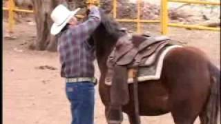 Download ″Como amansar caballos sin golpes″ Video