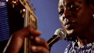 Download Sharon Jones, ″This land is your land″ Video