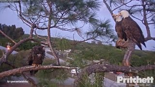Download SWFL Eagles - Welcome Home Daddy! 3.28.2017 Video