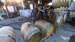 Download Vine to Wine, Winemaking at Naggiar Vineyards Video