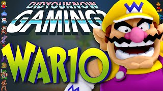 Download Wario - Did You Know Gaming? Feat. Jimmy Whetzel Video