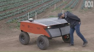 Download RIPPA The Farm Robot Exterminates Pests And Weeds Video