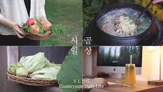 Download 찬바람 솔솔~ 얼갈이배추 겉절이와 바지락 손칼국수 🍜 Video