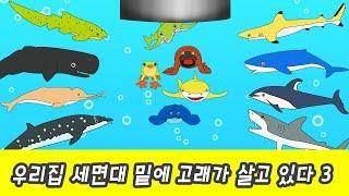 Download 한국어ㅣ우리집 세면대 밑에 고래가 산다 3화ㅣ어린이 동물만화, 고래의 모험, 해양동물 이름 외우기ㅣ꼬꼬스토이 Video