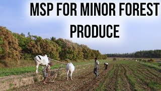 Download MSP hiked of Minor Forest Produce, Rate hike to benefit 5 crore Tribals, Current Affairs 2019 Video