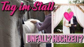 Download Ein TAG im Stall | UPDATES: Autounfall ?! Hochzeit?! | BinieBo Video