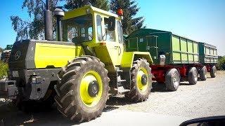 Download MB-TRACS unter´m Rohr ?! | Rapsernte im Detail | LEXION POV Drive | Farmvlog Video