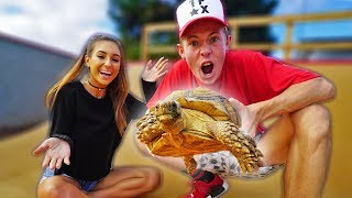 Download BUYING MY GIRLFRIEND A GIANT TORTOISE! *FREAK OUT* Video