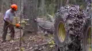 Download Wescott Logging - Cutting Some Pine Video