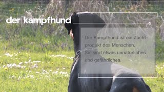 Download mediaMonkey e.U. :: Knurren, Bellen, Beißen. Der Mythos Kampfhund Video