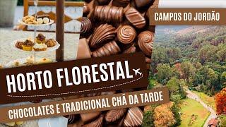 Download Passeio no Horto Florestal e chocolateria em CAMPOS DO JORDÃO Video