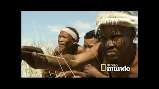 Download BOSQUIMANOS - Cazadores del Kalahari Video