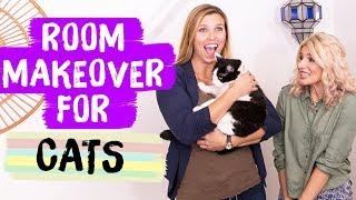 Download Cat Room Makeover! | Mr. Kate Decorates Video