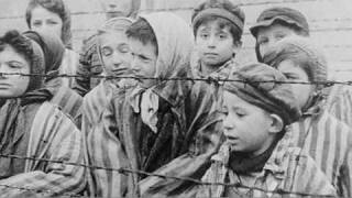 Download Footprints: Discovering the Holocaust through Historical Artefacts Video