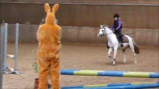 Download Horse Jumping fail. Mijn val tijdens mijn eerste springwedstrijd. Let op de paashaas. Video