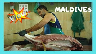Download Cleaning a 50Kg tuna at the fish market in Malé, The Maldives Video