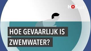 Download Kijk dit even voor je in een rivier duikt Video