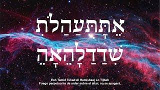 Download Kabbalah Disolviendo los bloqueos de nuestra vida Maestro Albert Gozlan Video